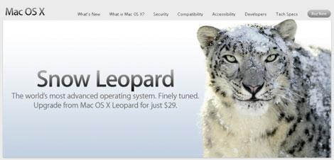 snow-leopard-470.jpg